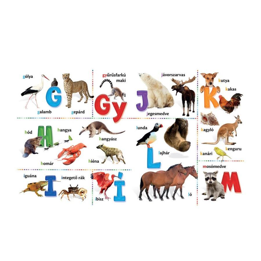 Állat ABC - vidám, képes lapozgató